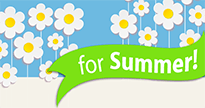 Lose a Stone for Summer Widget Bottom