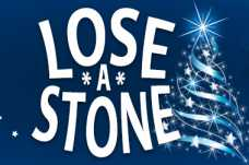 Lose a Stone for Christmas Widget Top