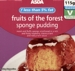 Adsa Forest Fruits Sponge Pudding