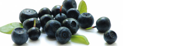 Blueberries to reduce cholesterol