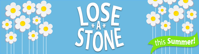Lose a Stone for Summer Banner Advert