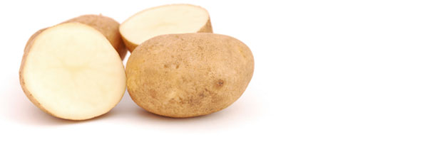 Starchy Foods and the Obesity Epidemic - Weight Loss Resources