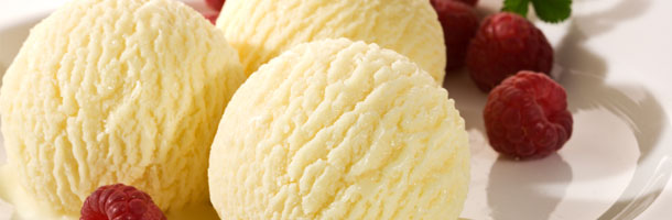 Low Fat Vanilla Ice Cream