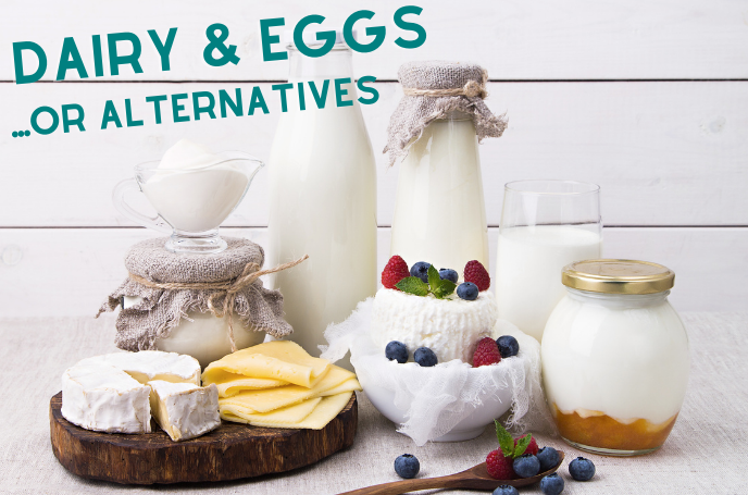 Dairy, Eggs or Alternatives: A Great Source of Protein and Minerals