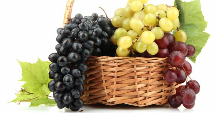 Red, Green and Black Grapes in a Basket
