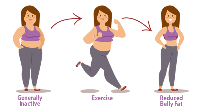 New Clue to How Exercise Shrinks Your Belly