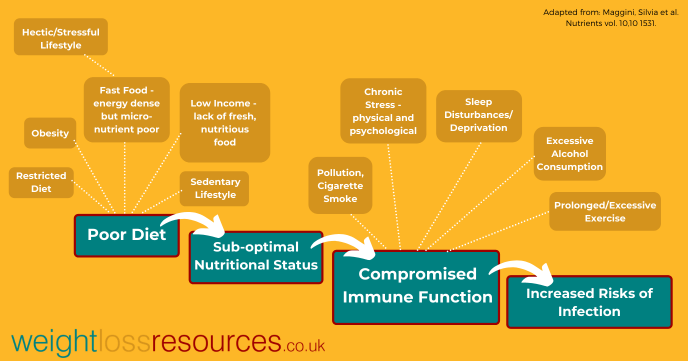 factors affecting immune system function in adults