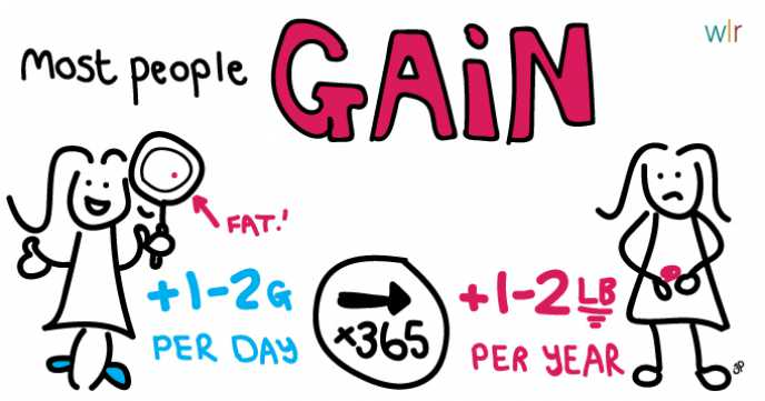 Fat Fact Illustration: Weight Gain