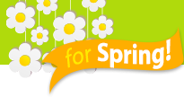Lose a Stone for Spring Widget Footer Image