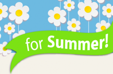 Lose a Stone for Summer Widget Footer Image