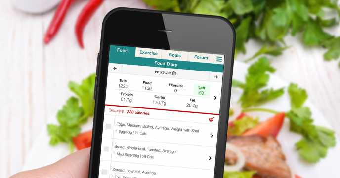 wlr Food Diary on Mobile Web App